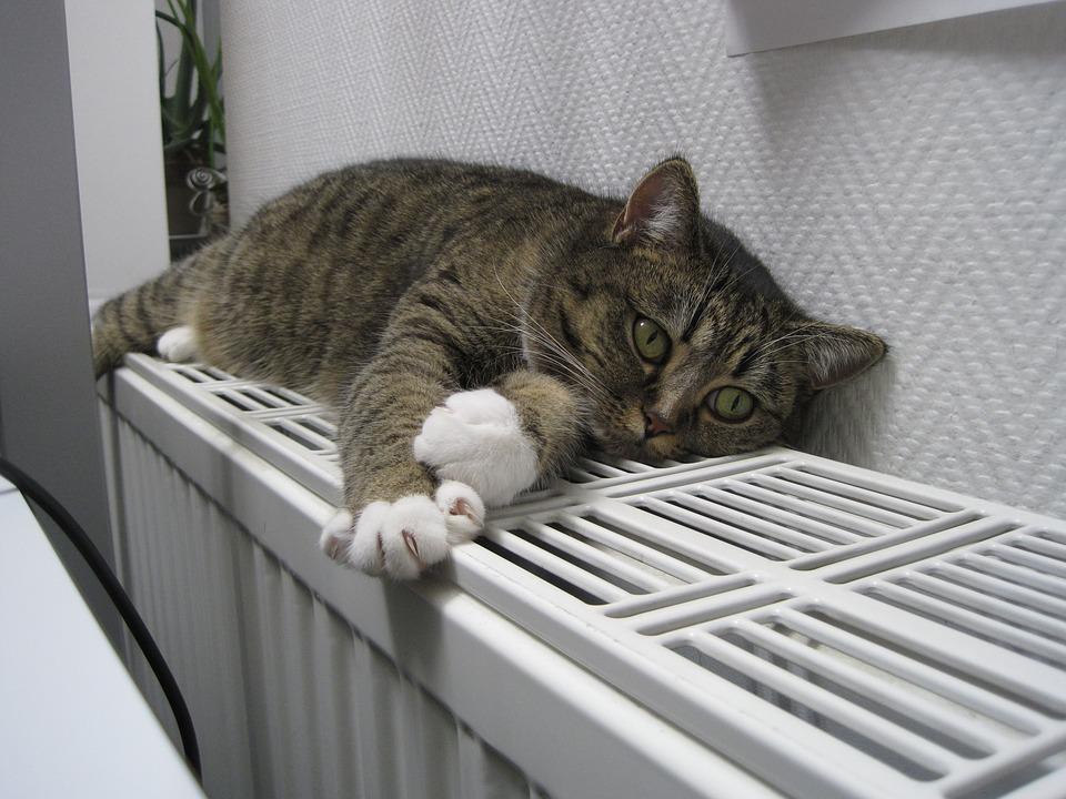 Odzdušnění topení