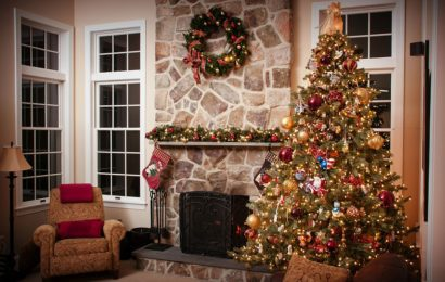 Nepodceňte výběr vánočního stromku