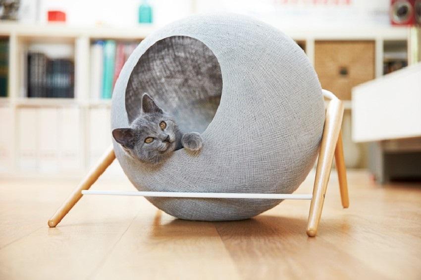 Elegantní a originální tip na pelíšek pro kočku