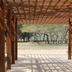 Jak natřít a ošetřit dřevo v exteriéru
