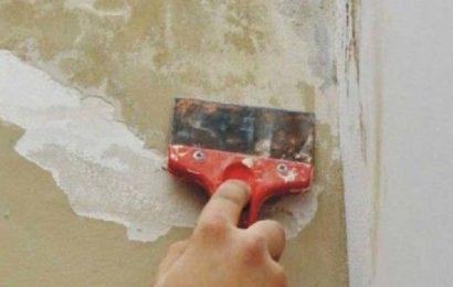 Jak odstranit starou klihovou barvu?
