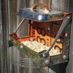 Jak vytvořit krmítko pro ptáčky? 6 inspirací
