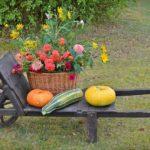 13 tipů na podzimní dekorace, který zvládne každý
