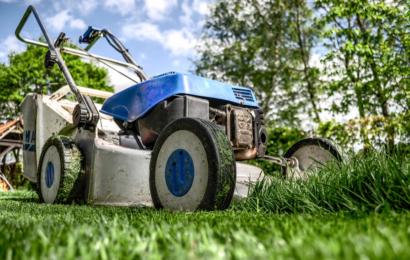 Kdy naposledy sekat trávník?