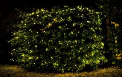 Tipy na vánoční dekorace na zahradu – Inspirace